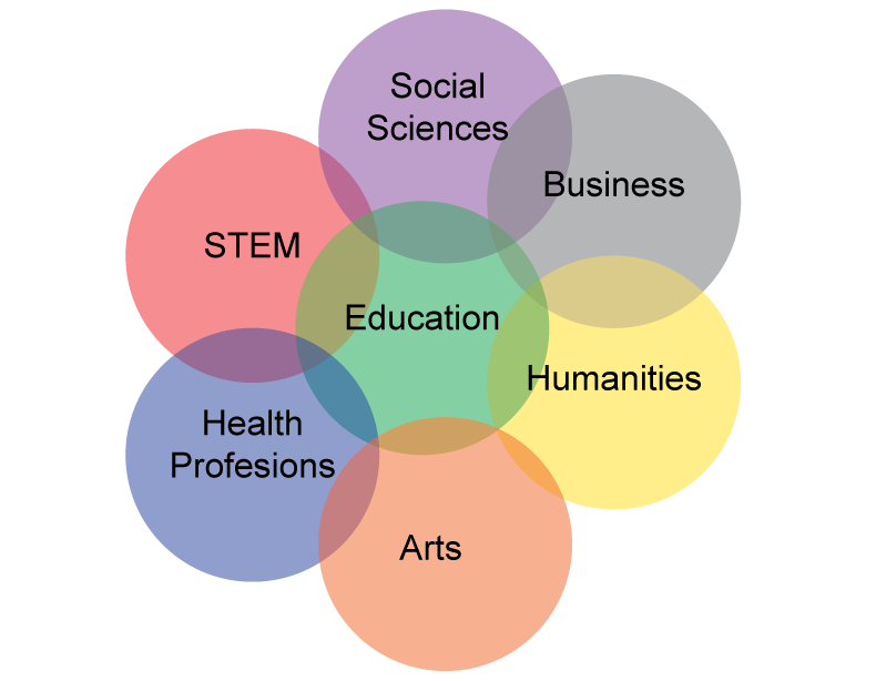 Seven focus areas: Business, Social Sciences, STEM, Humanities, Education, Health Professions, Education, and Arts