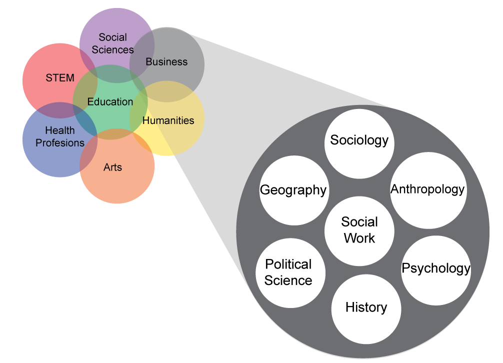 Focus Areas Graphic with pop-out for Social Sciences